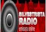 Silvestrista Radio
